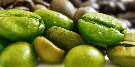 ¿El Green Coffee ayuda a perder peso?